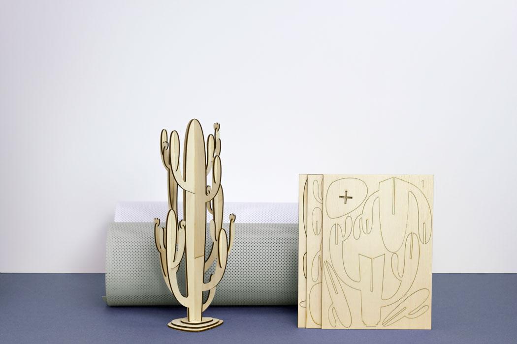 Kaktus fürs Wohnzimmer