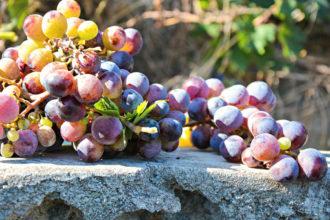 Weinfest in Binissalem auf Mallorca