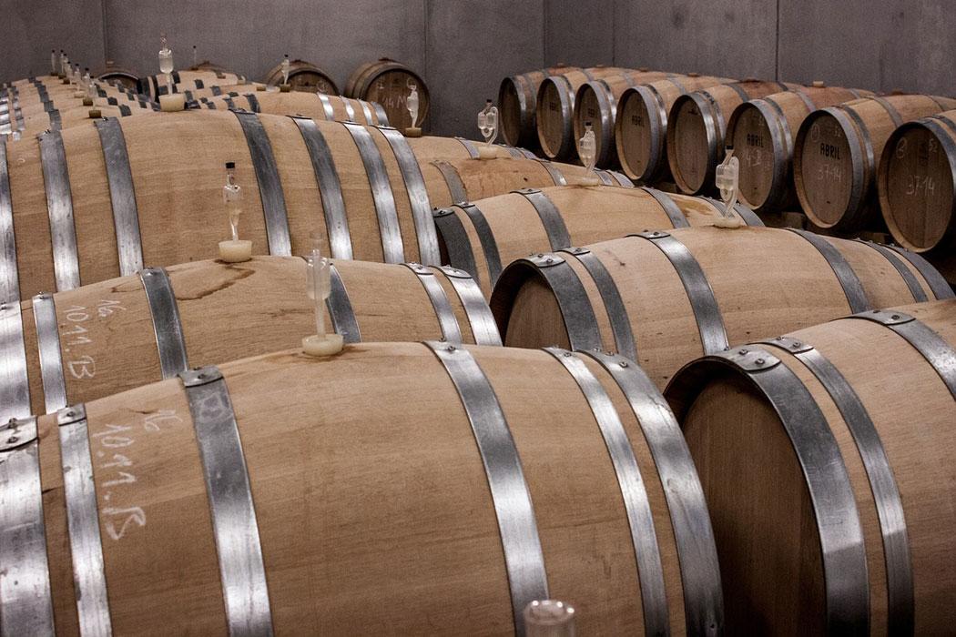 Weinwunderland Mallorca