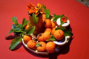 Pomeranzen aus Mallorca