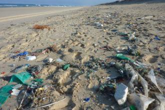 Müll sammeln auf Mallorca