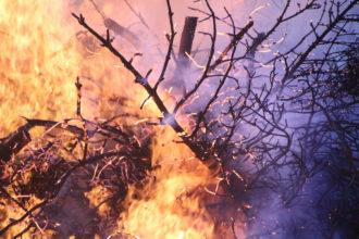 Mallorca und die Feuer