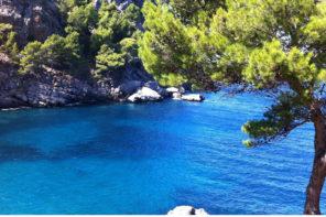 Blaue Flaggen auf Mallorca