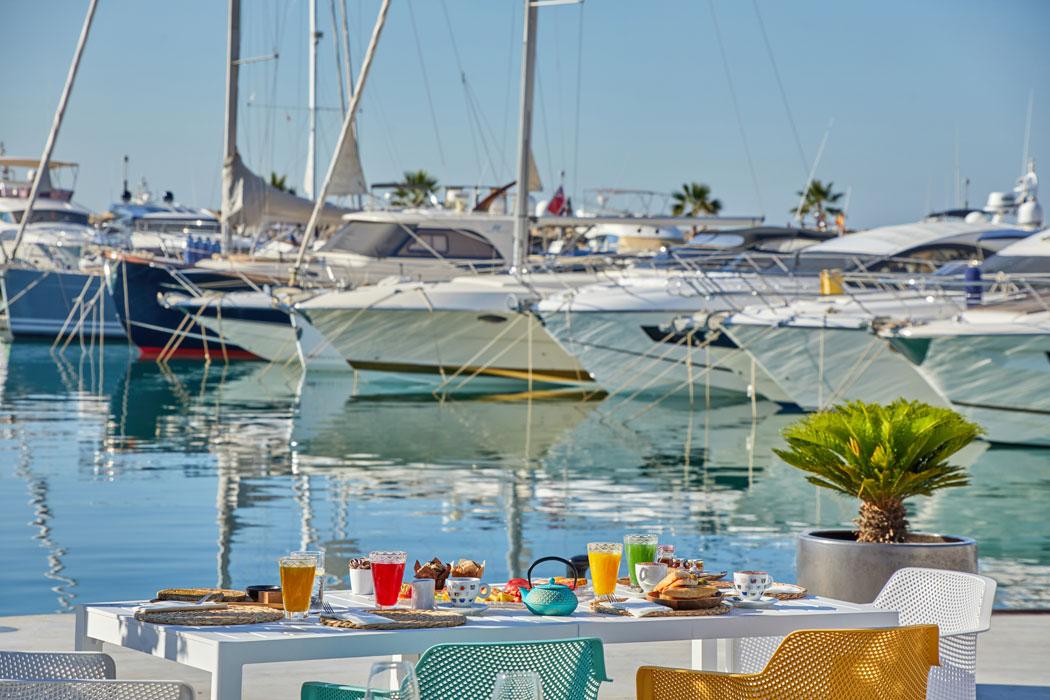 Genuss in Palmas Hafen