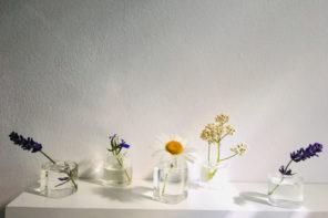 Mini-Vase, große Wirkung