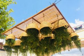 Hängende Gärten von Mallorca