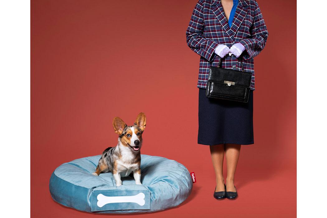 Hundekisssen für die Mallorca-Finca