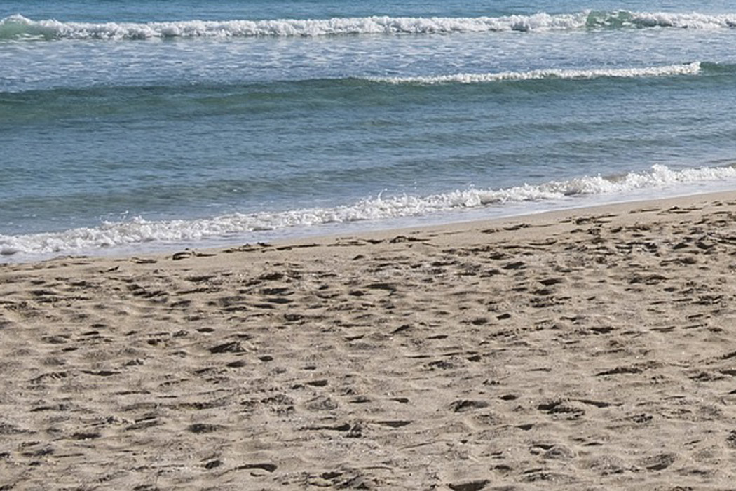 Sensoren schlagen Alarm am Strand