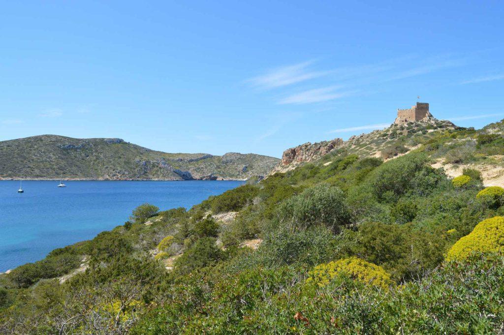 Mallorca kurios